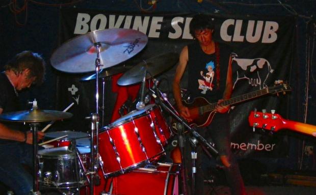 Bovine620