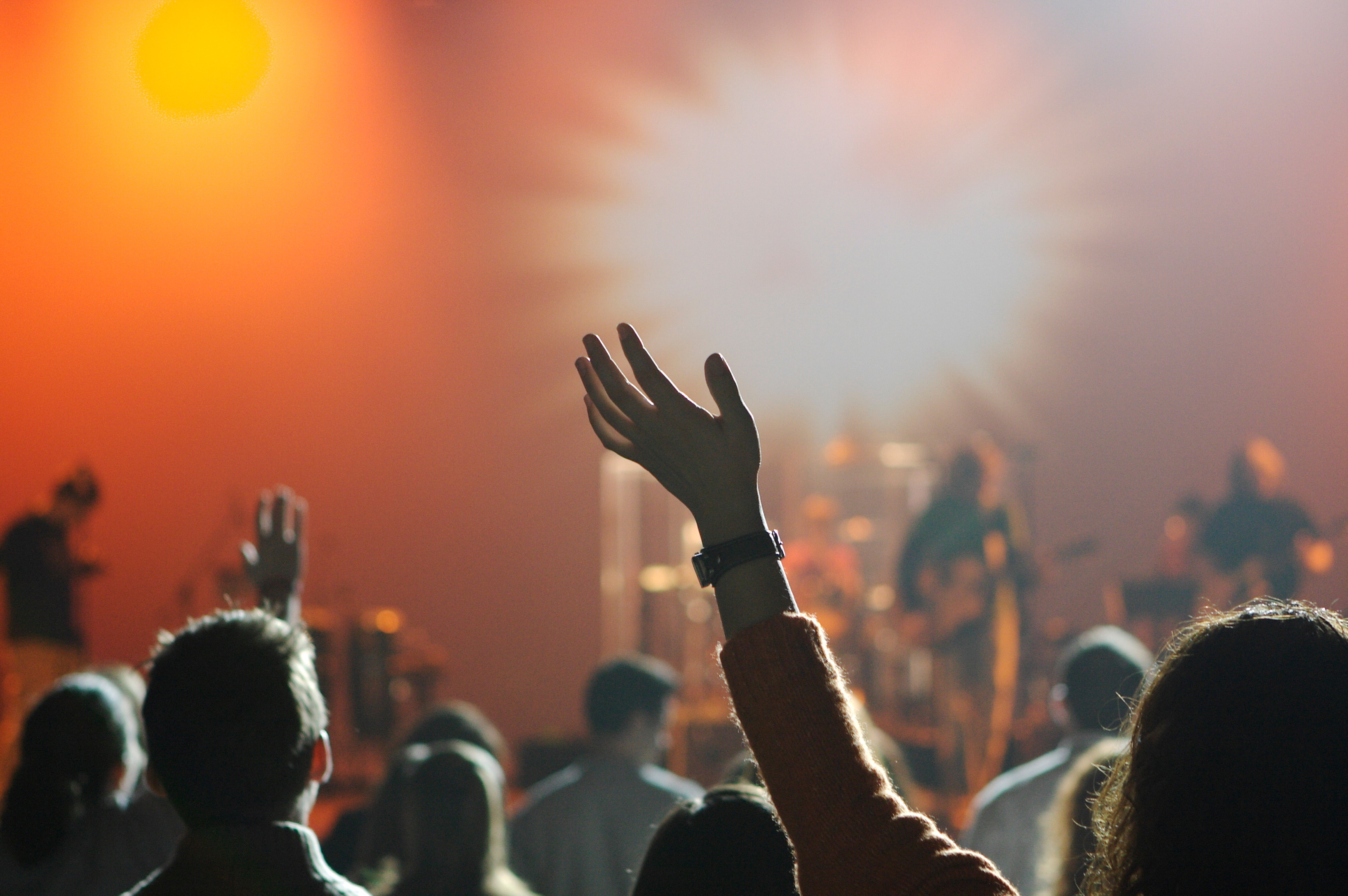 concert crowd with fan with raised hand and band in background